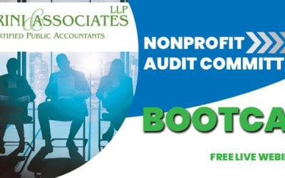 Nonprofit Audit Committee Bootcamp Part 2 – The Committee's Role in the Audit Process
